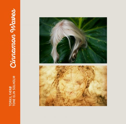 Cinnamon-Waves_front-cover